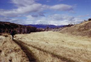 2002 Chile Torres Weg