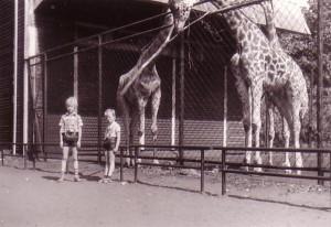 Tierpark7